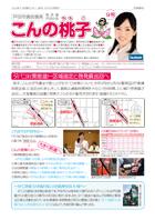 report_12